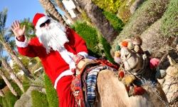 Туры в Египет на зимние каникулы из Казани