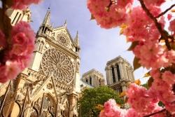 Туры во Францию в мае