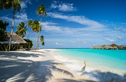 Туры на Мальдивы из Казани