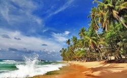 Туры на Шри-Ланку в декабре